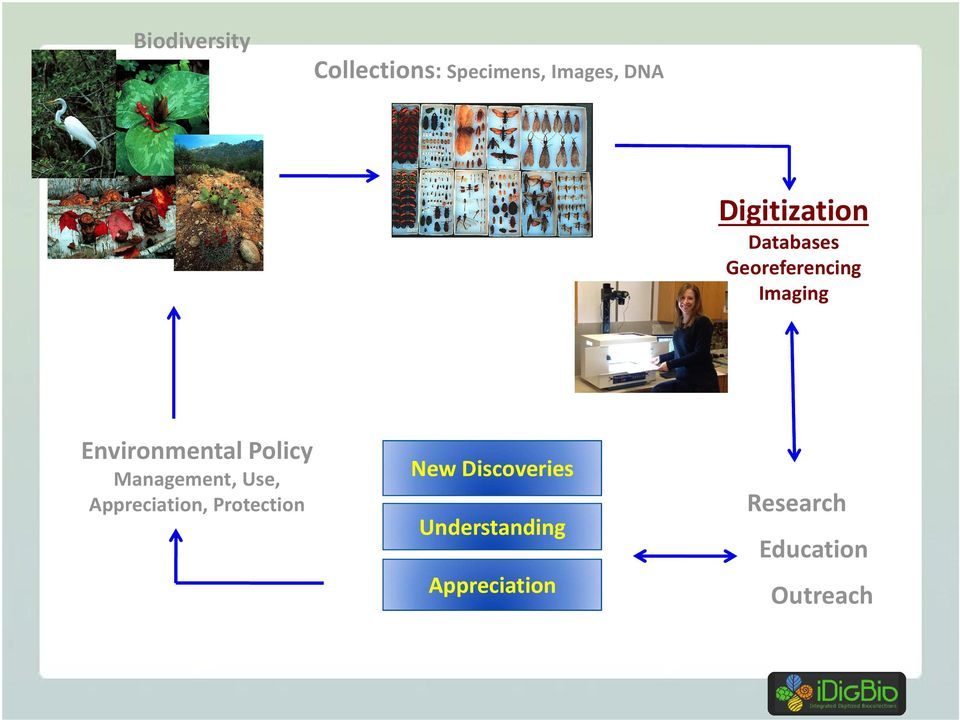 Environmental Policy Management, Use, Appreciation,