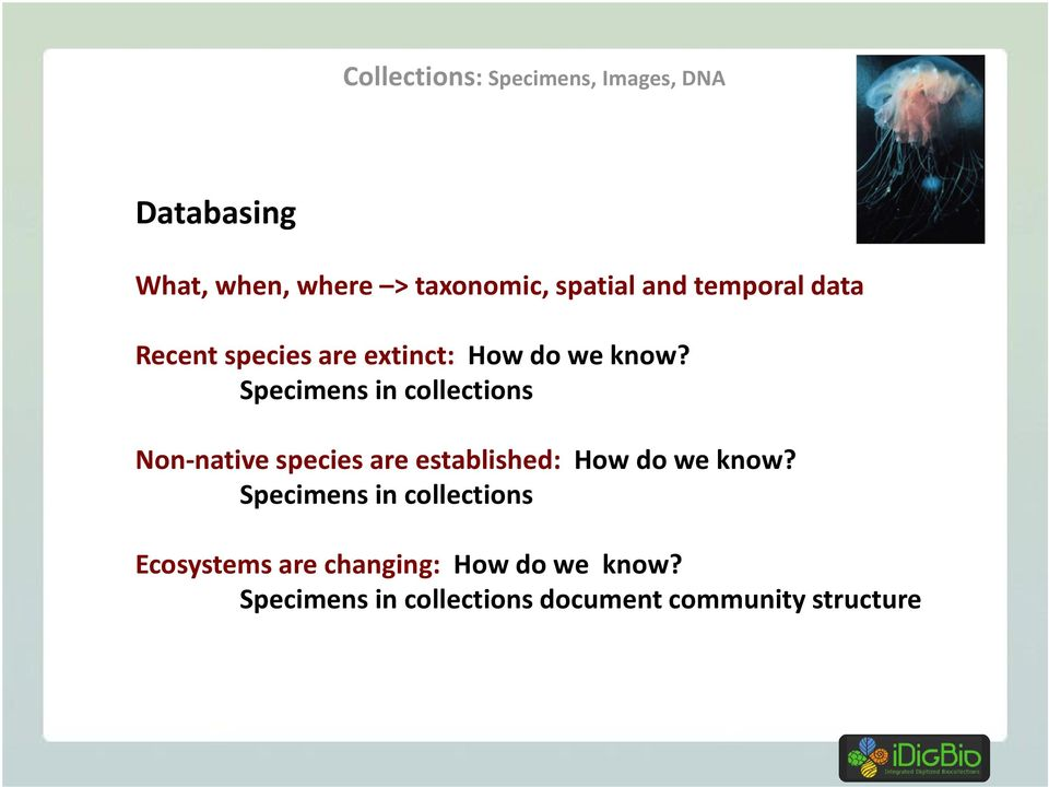 Specimens in collections Non-native species are established: How do we know?