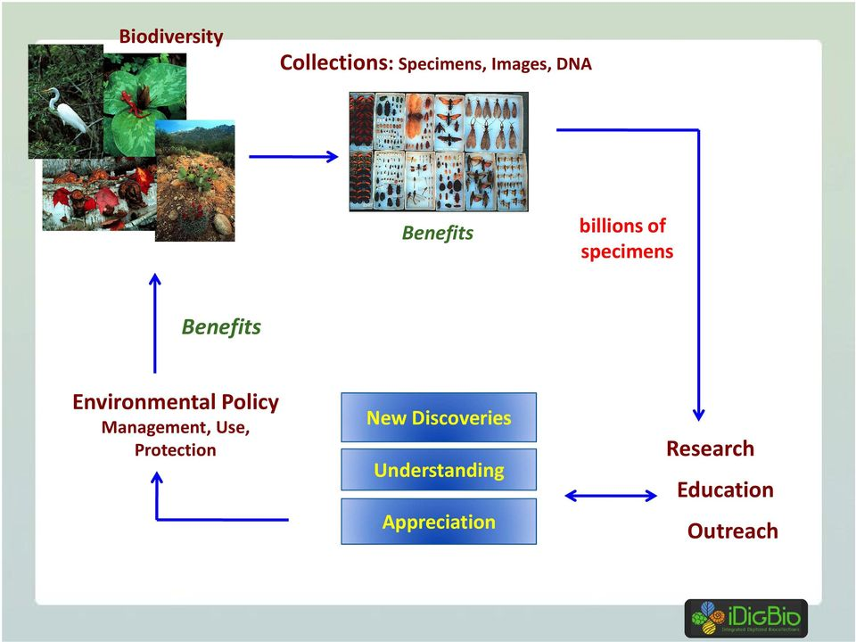Environmental Policy Management, Use, Protection