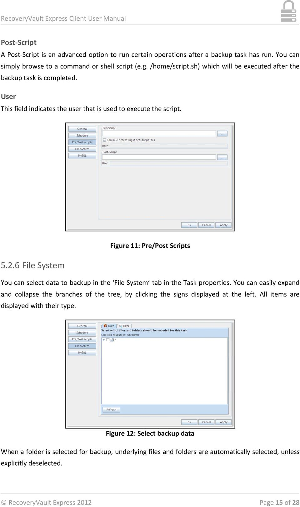 6 File System Figure 11: Pre/Post Scripts You can select data to backup in the File System tab in the Task properties.