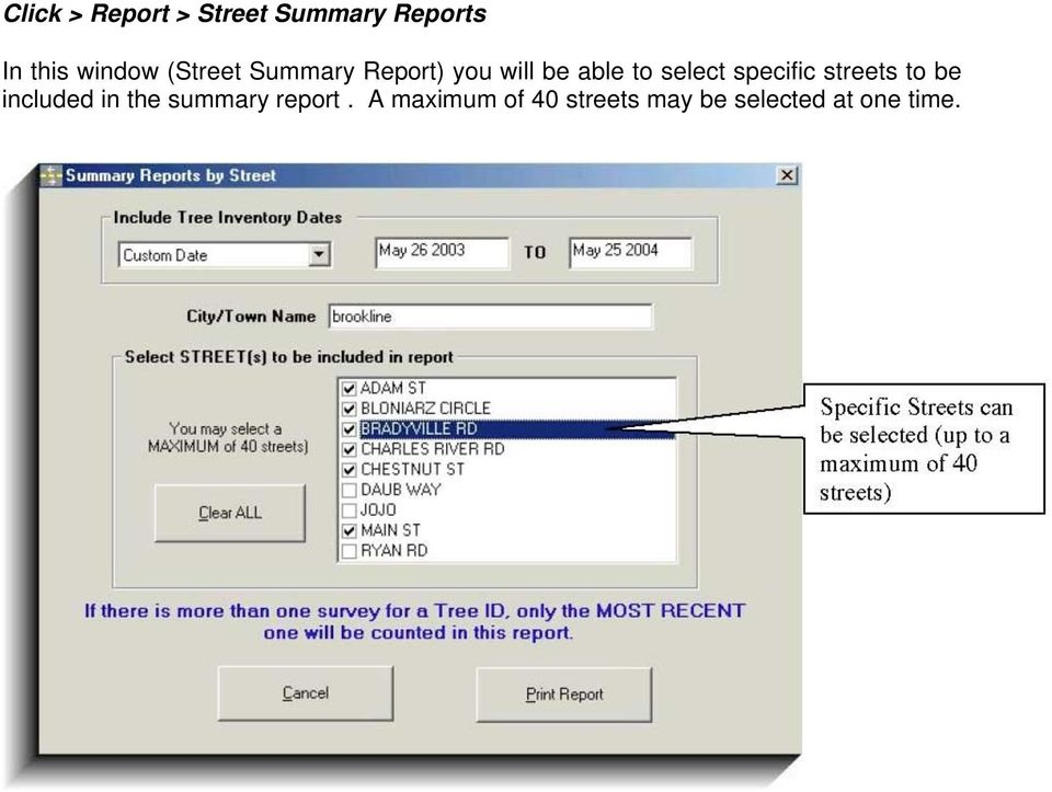 select specific streets to be included in the summary