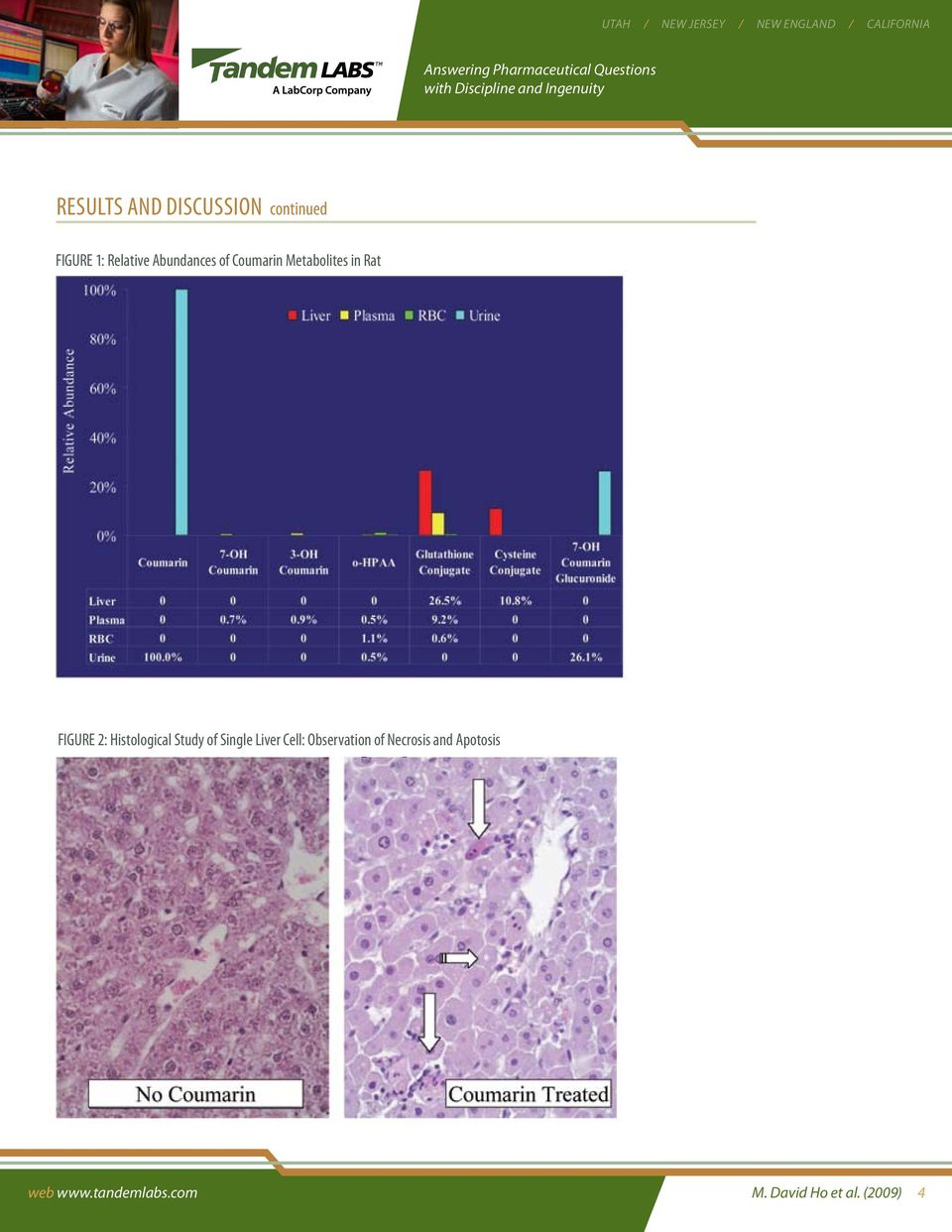 Study of Single Liver Cell: Observation of