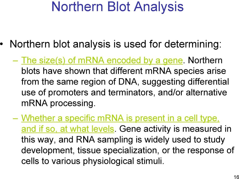 terminators, and/or alternative mrna processing. Whether a specific mrna is present in a cell type, and if so, at what levels.