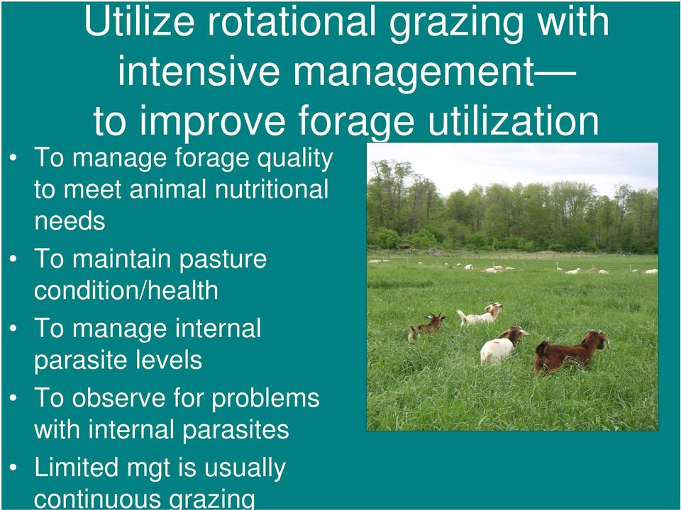 maintain pasture condition/health To manage internal parasite levels To