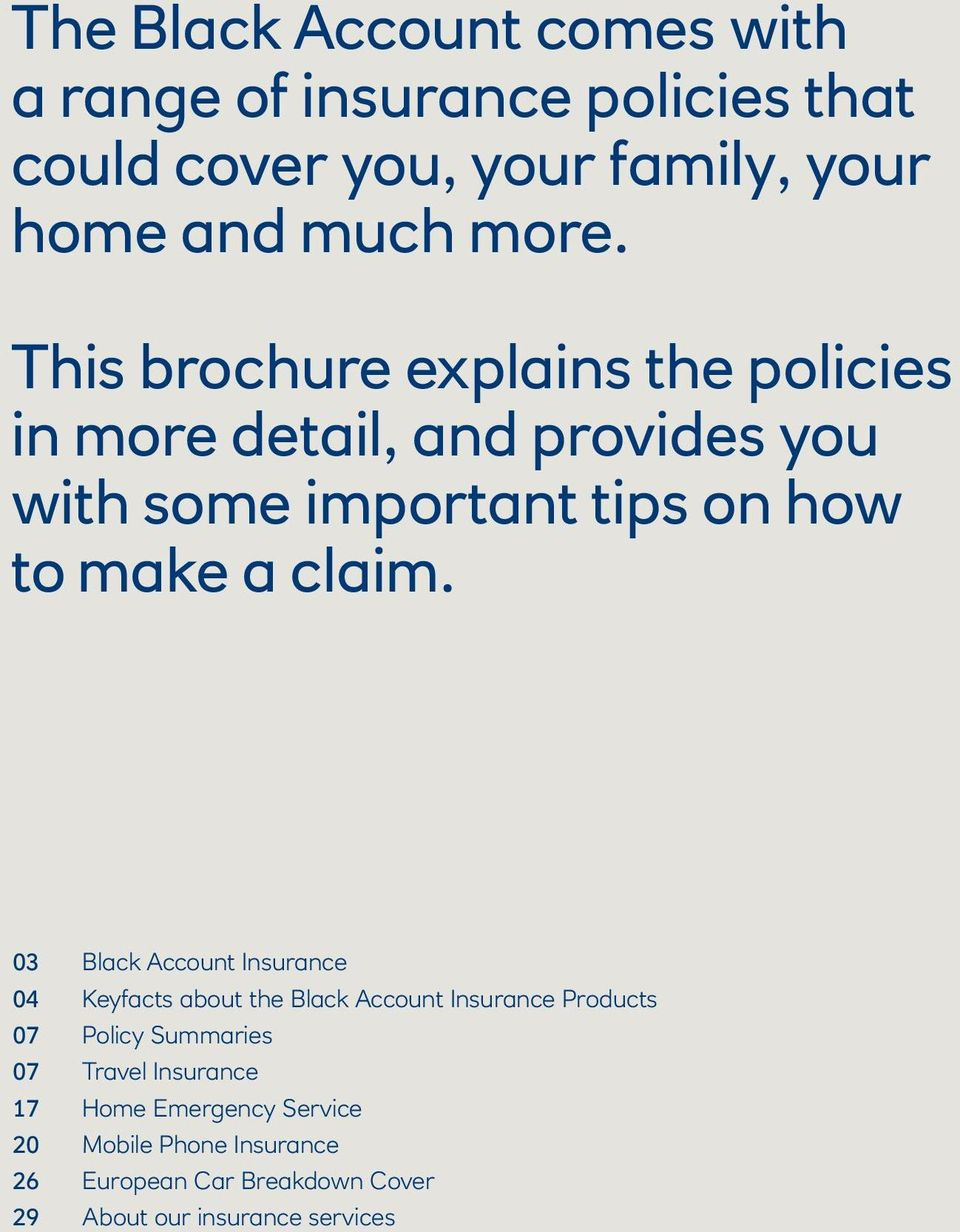 03 Black Account Insurance 04 Keyfacts about the Black Account Insurance Products 07 Policy Summaries 07 Travel