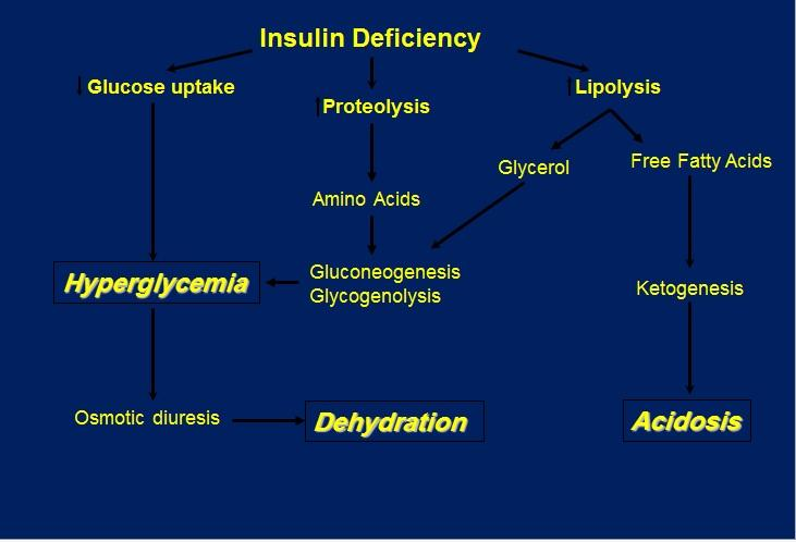 introduction The prognosis of DKA is worse in the extremes