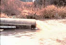 Note any pipes that discharge into your stream. Are there discharging pipes? If so, how many? What types of pipes are they?