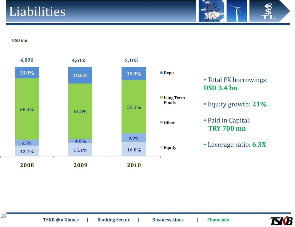 0% Long Term Funds Other Equity Total FX borrowings: USD 3.