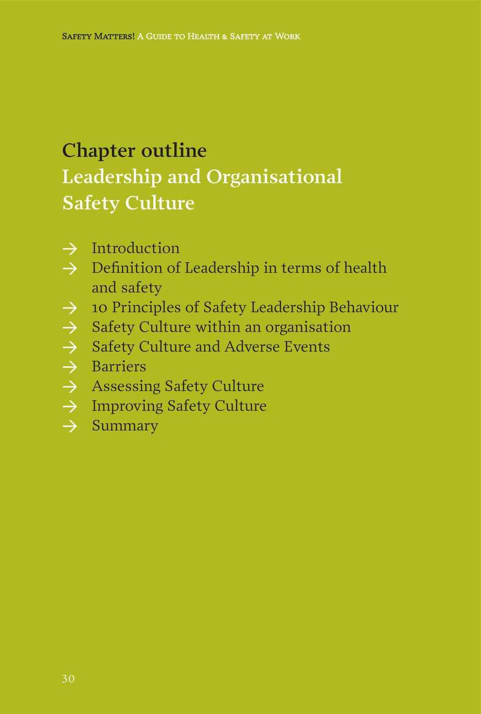 > Introduction > Definition of Leadership in terms of health and safety > 10 Principles of