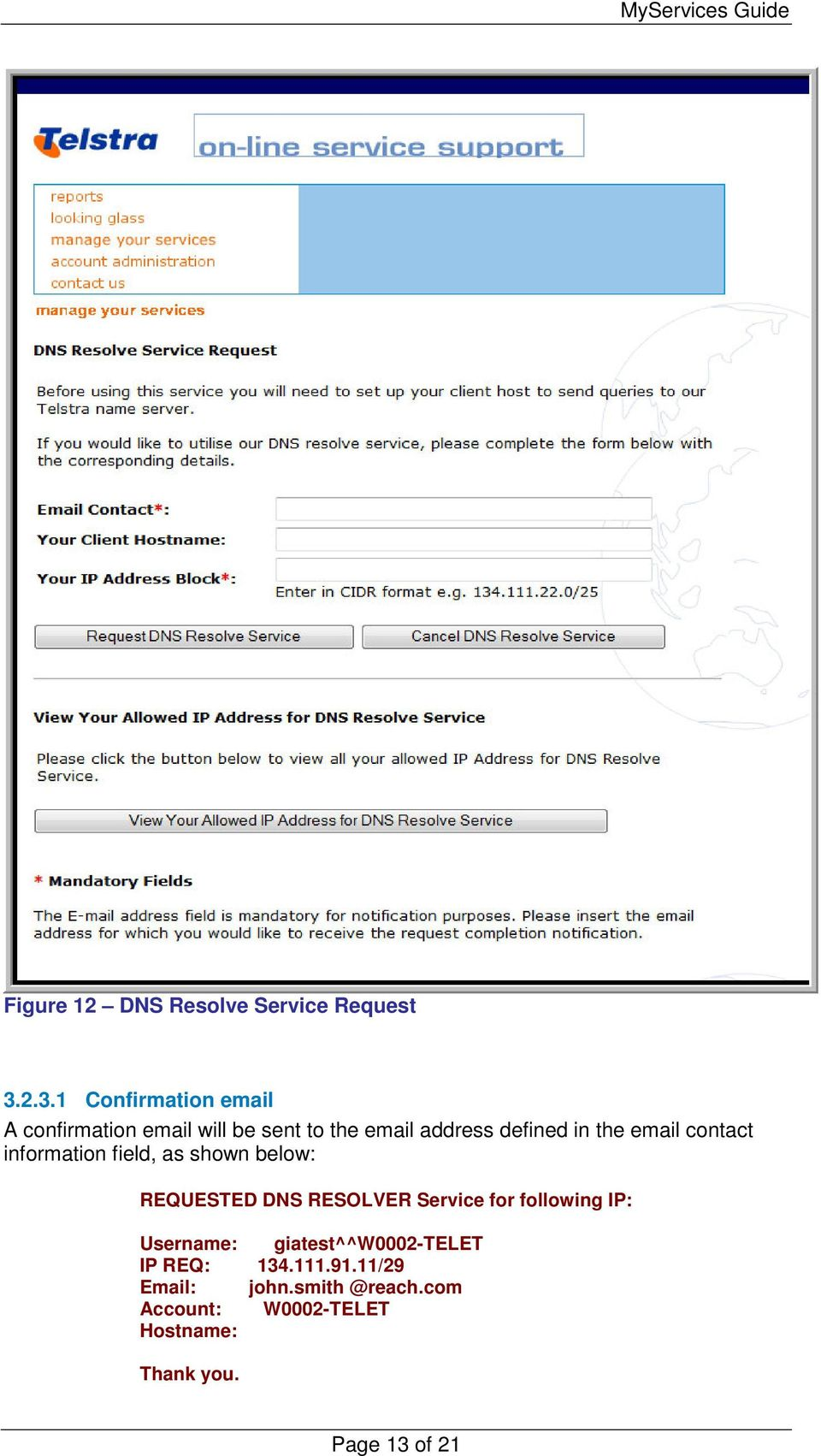 the email contact information field, as shown below: REQUESTED DNS RESOLVER Service for