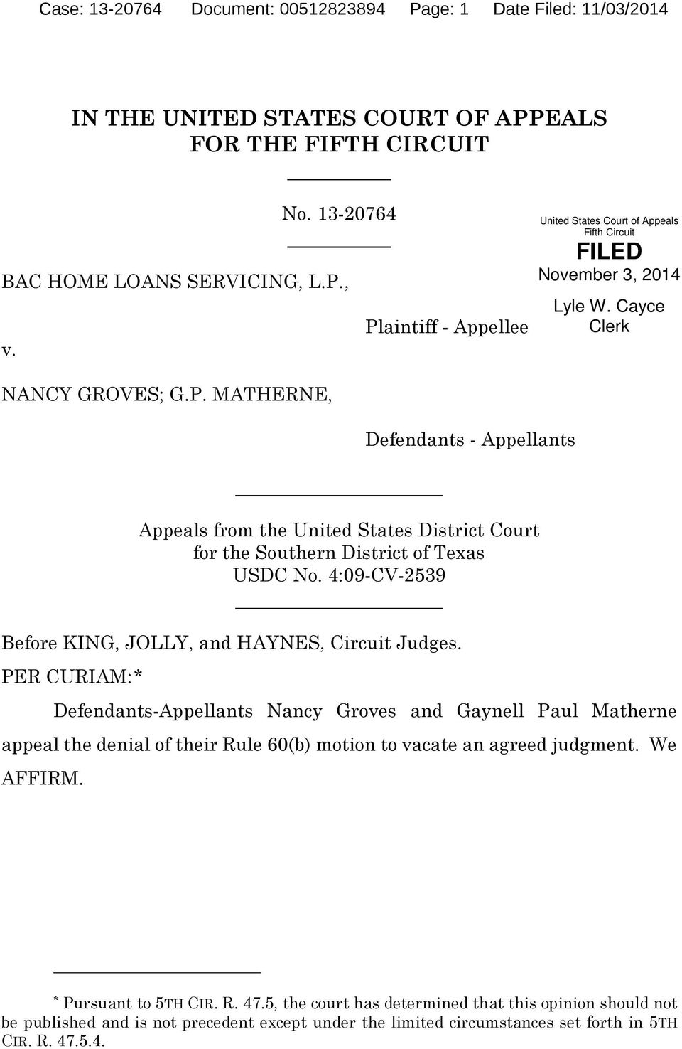 MATHERNE, Defendants - Appellants Appeals from the United States District Court for the Southern District of Texas USDC No. 4:09-CV-2539 Before KING, JOLLY, and HAYNES, Circuit Judges.