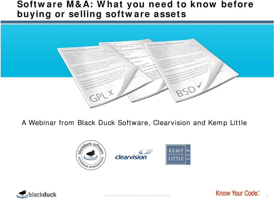 Duck Software, Clearvision and Kemp Little