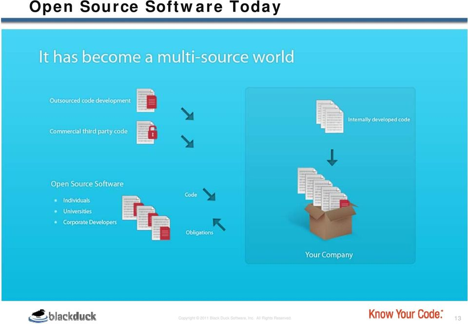 Black Duck Software,