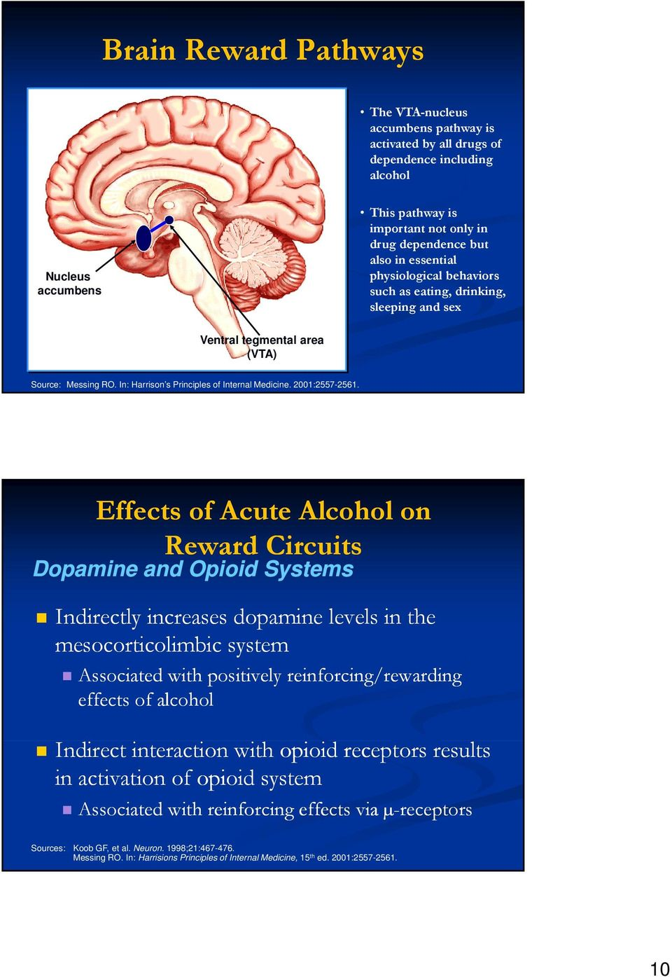 Effects of Acute Alcohol on Reward Circuits Dopamine and Opioid Systems Indirectly increases dopamine levels l in the mesocorticolimbic system Associated with positively reinforcing/rewarding effects