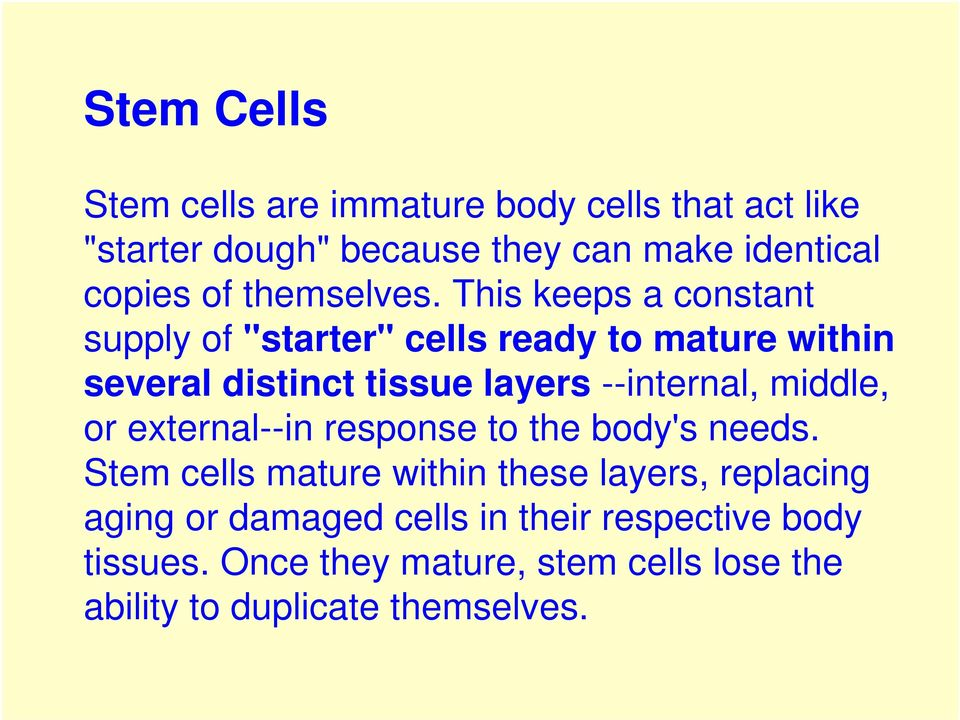 "This keeps a constant supply of ""starter"" cells ready to mature within several distinct tissue layers --internal,"