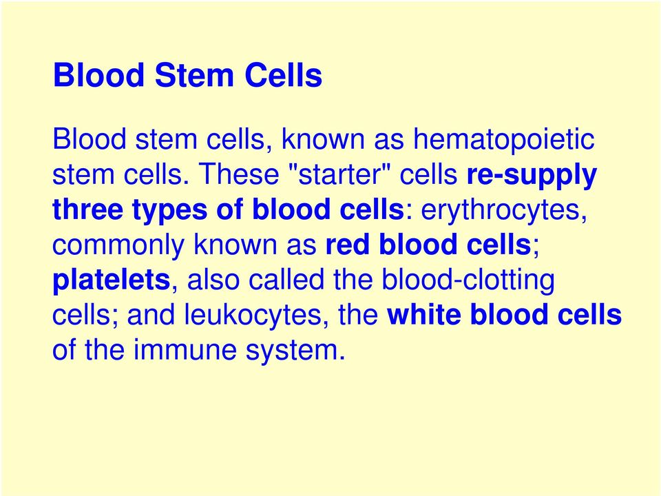 erythrocytes, commonly known as red blood cells; platelets, also called