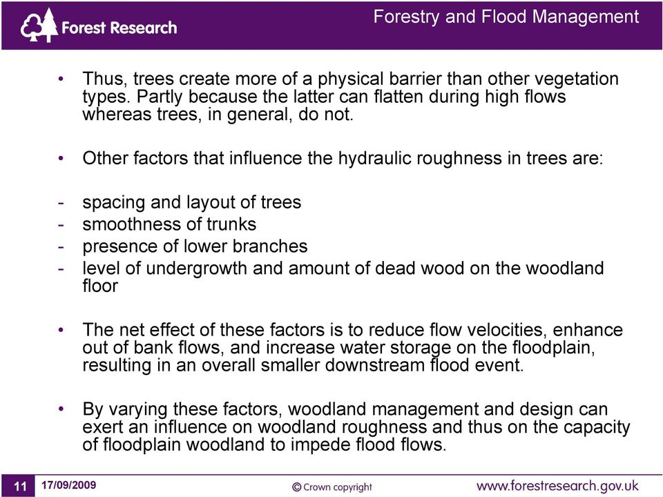 dead wood on the woodland floor The net effect of these factors is to reduce flow velocities, enhance out of bank flows, and increase water storage on the floodplain, resulting in an