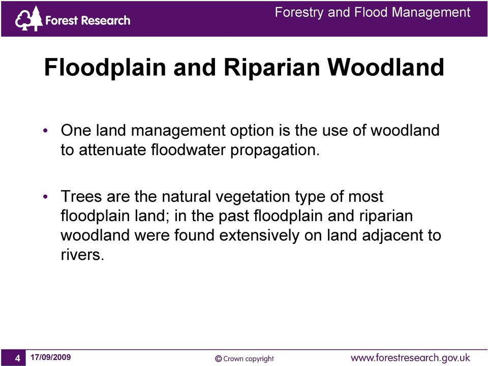 Trees are the natural vegetation type of most floodplain land; in the