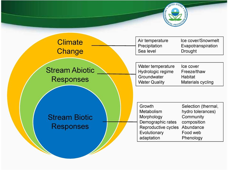 Materials cycling Stream Biotic Responses Growth Metabolism Morphology Demographic rates Reproductive cycles