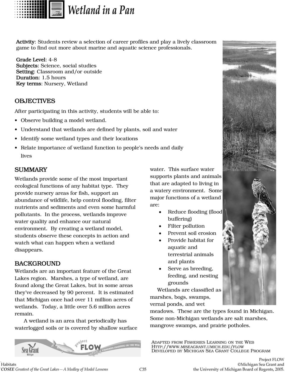 5 hours Key terms: Nursery, Wetland OBJECTIVES After participating in this activity, students will be able to: Observe building a model wetland.