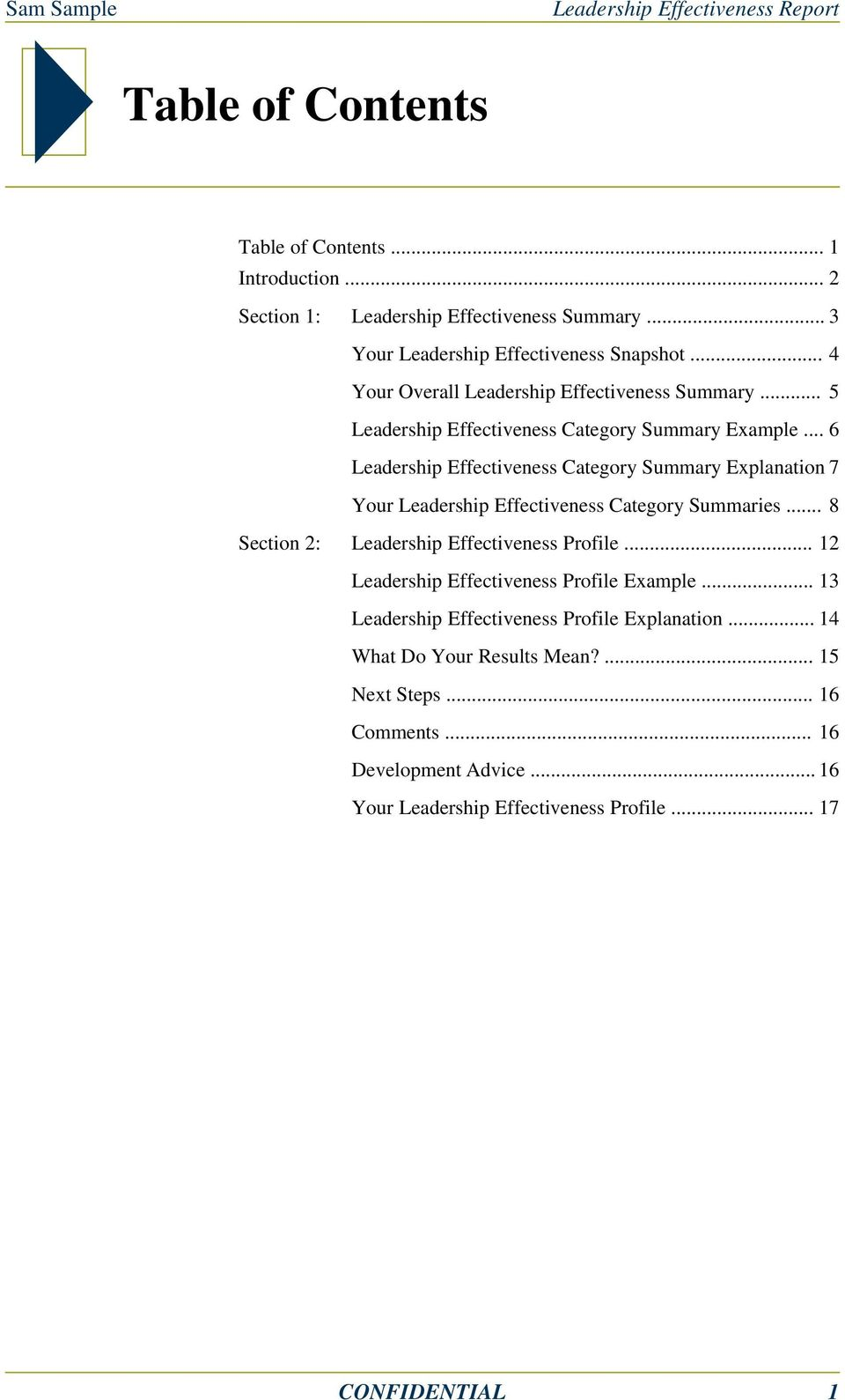 .. 6 Leadership Effectiveness Category Summary Explanation 7 Your Leadership Effectiveness Category Summaries... 8 Section 2: Leadership Effectiveness Profile.