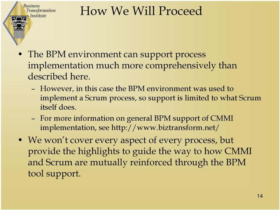 For more information on general BPM support of CMMI implementation, see http://www.biztransform.