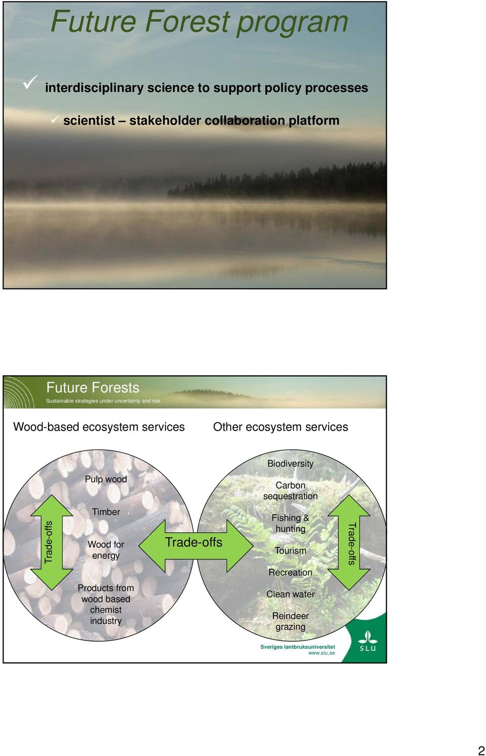 ecosystem services Biodiversity Pulp wood Carbon sequestration Trade-offs Timber Wood for energy Trade-offs