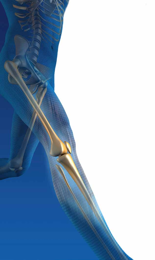 Information About Your Upcoming Total Joint Replacement Surgery (Arthroplasty) You probably have questions about your surgery, recovery process, discharge and rehabilitation.