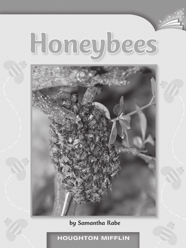 LESSON 24 TEACHER S GUIDE by Samantha Rabe Fountas-Pinnell Level L Informational Text Selection Summary live in groups called a colony in a nest known as a hive.