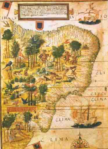 Exploitation of natural resource as old as Brazil In Brazil From 1500 to 1822, exploitation for external market.