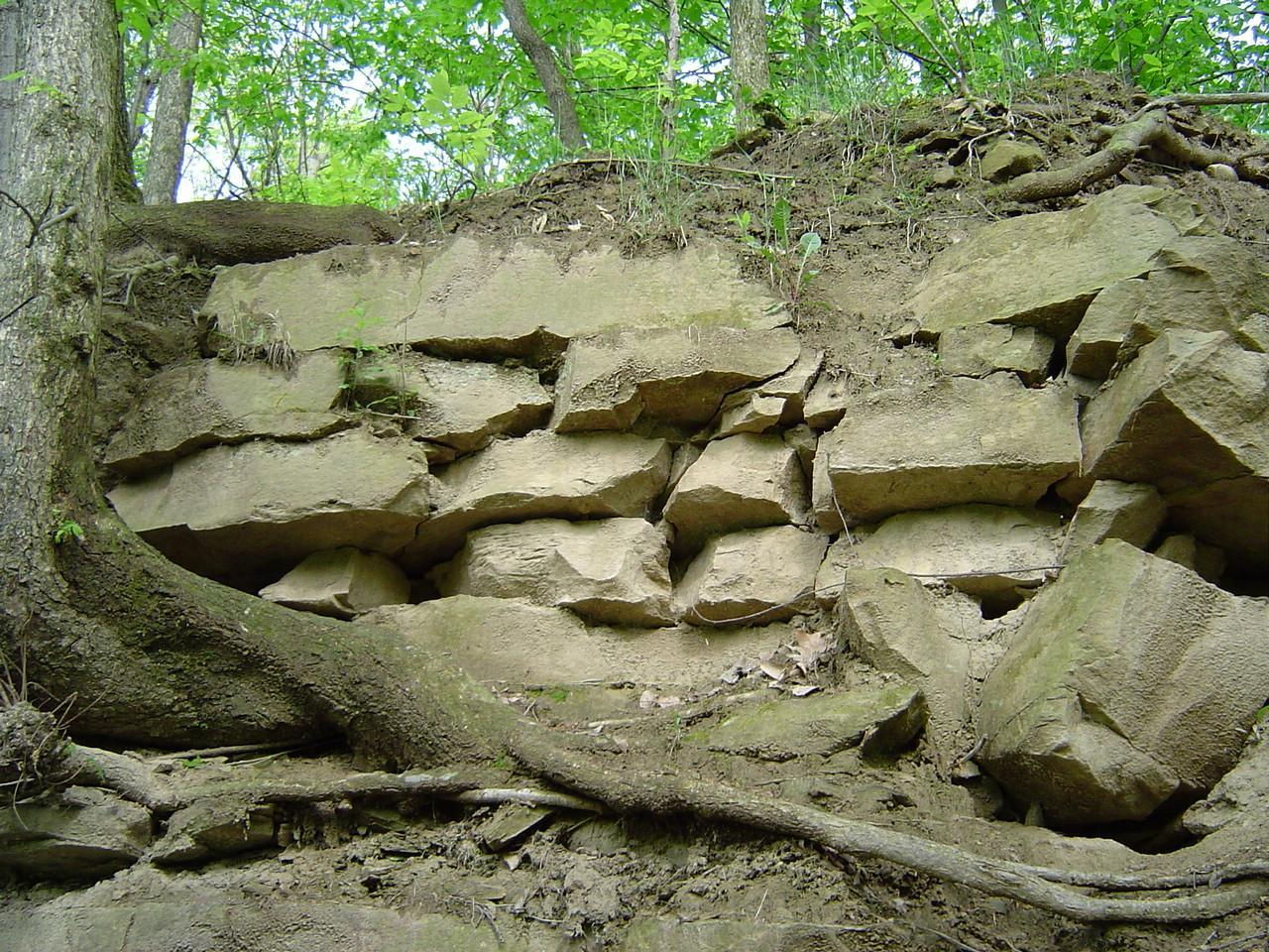 Pennsylvanian Sandstones at Grand Ledge, MI http://www.msstate.
