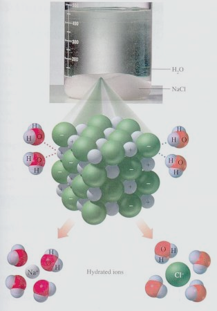 Background: Water and Salt Solubility In the solid salt, the ions are fixed in a rigid crystal lattice In water solution the salt ions are dissociated and free to move about. Water (H 2 O) is polar.