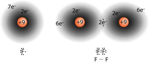 When ions form, they conform to the octet rule by either losing or gaining electrons in order to achieve the electron configuration of the nearest noble gas.