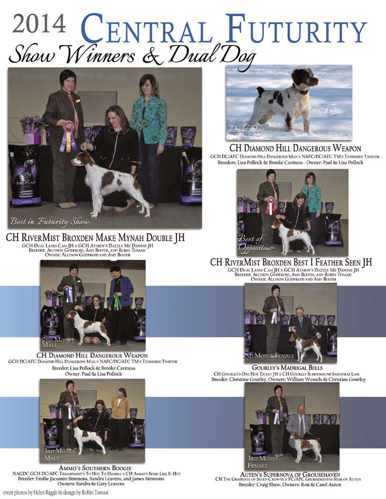 The american brittany pdf 29 fandeluxe Images