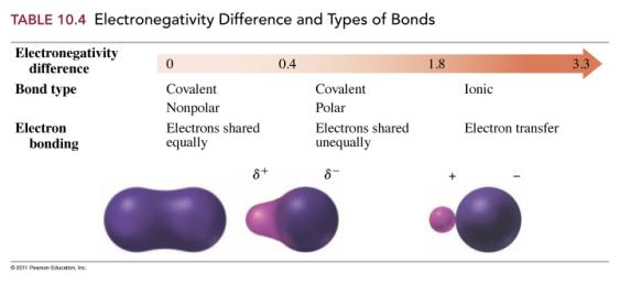 Nonpolar Covalent Bonds Using the periodic table, predict the order of increasing electronegativity for the elements O, K, and C.