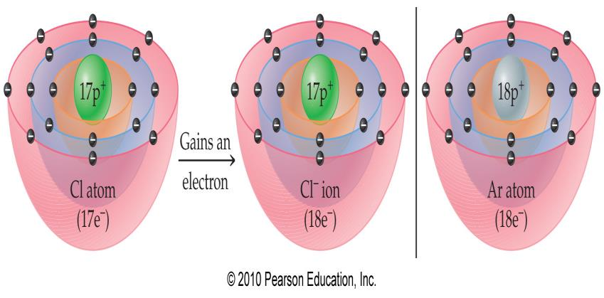 Stable Electron Configurations Sodium can lose a valence electron. In doing so, its core electrons are like the noble gas, neon.