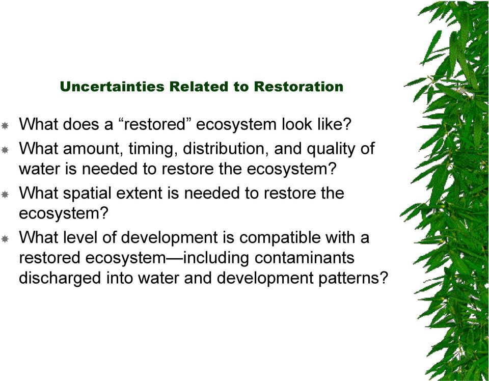 What spatial extent is needed to restore the ecosystem?
