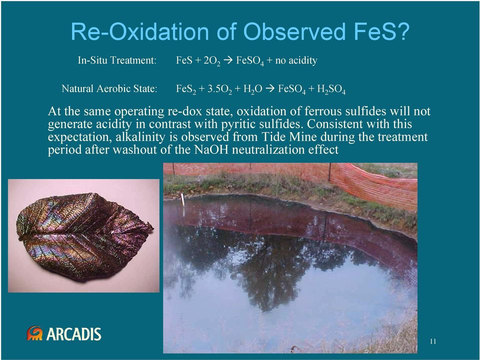 5O 2 + H 2 O FeSO 4 + H 2 SO 4 At the same operating re-dox state, oxidation of ferrous sulfides will not