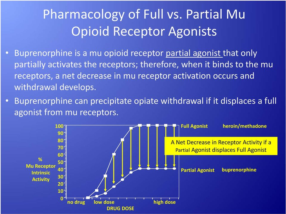 binds to the mu receptors, a net decrease in mu receptor activation occurs and withdrawal develops.