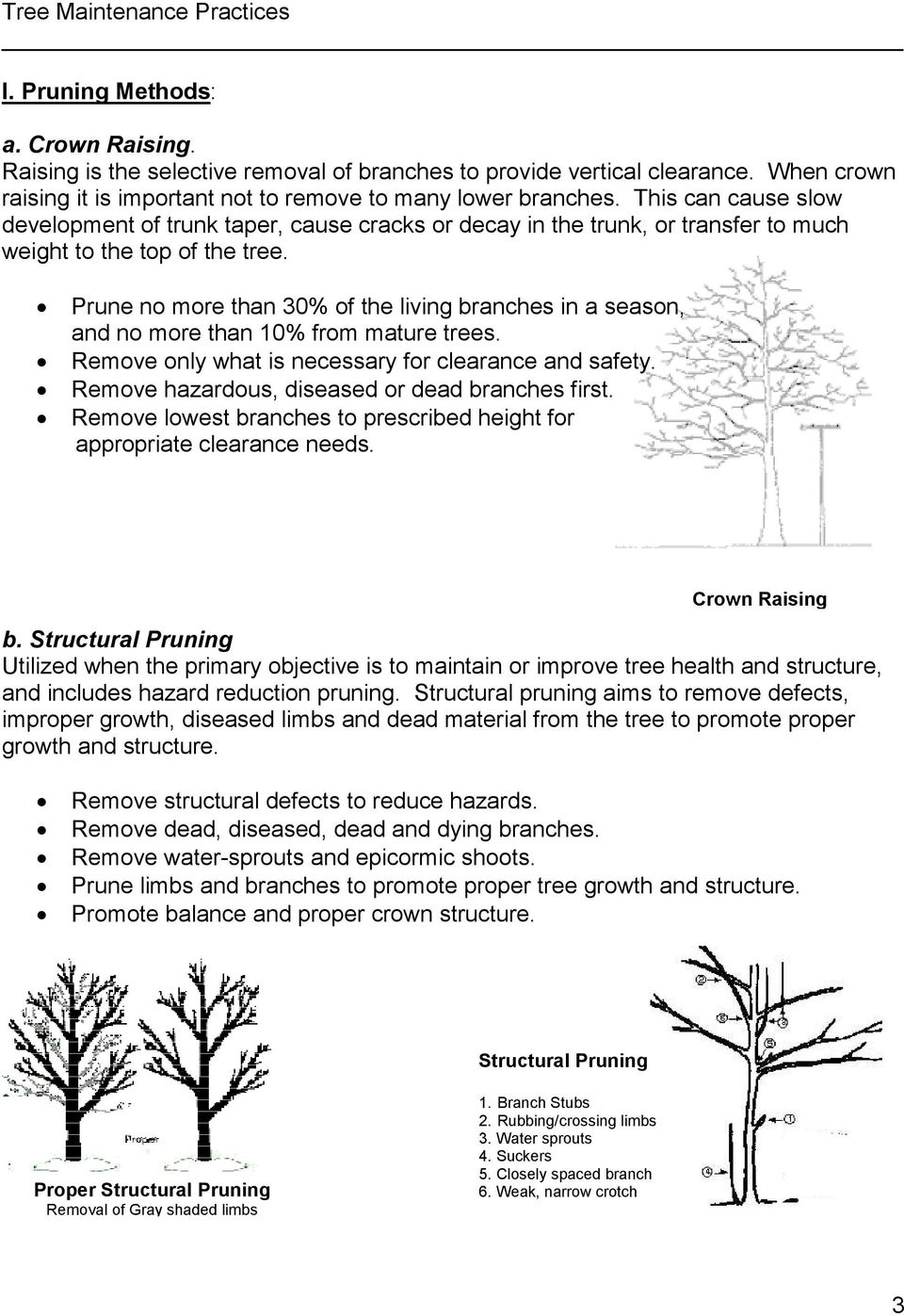 Prune no more than 30% of the living branches in a season, and no more than 10% from mature trees. Remove only what is necessary for clearance and safety.
