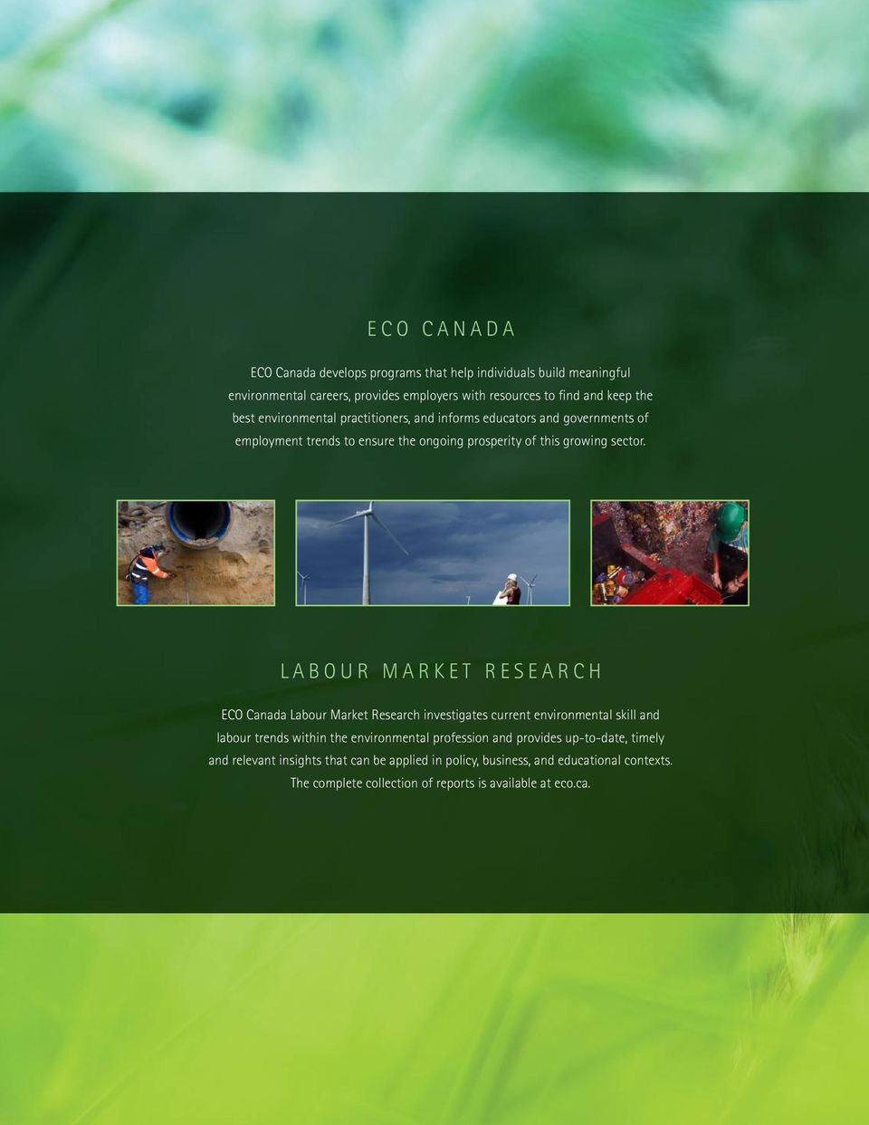 LABOUR MARKET RESEARCH ECO Canada Labour Market Research investigates current environmental skill and labour trends within the environmental profession and