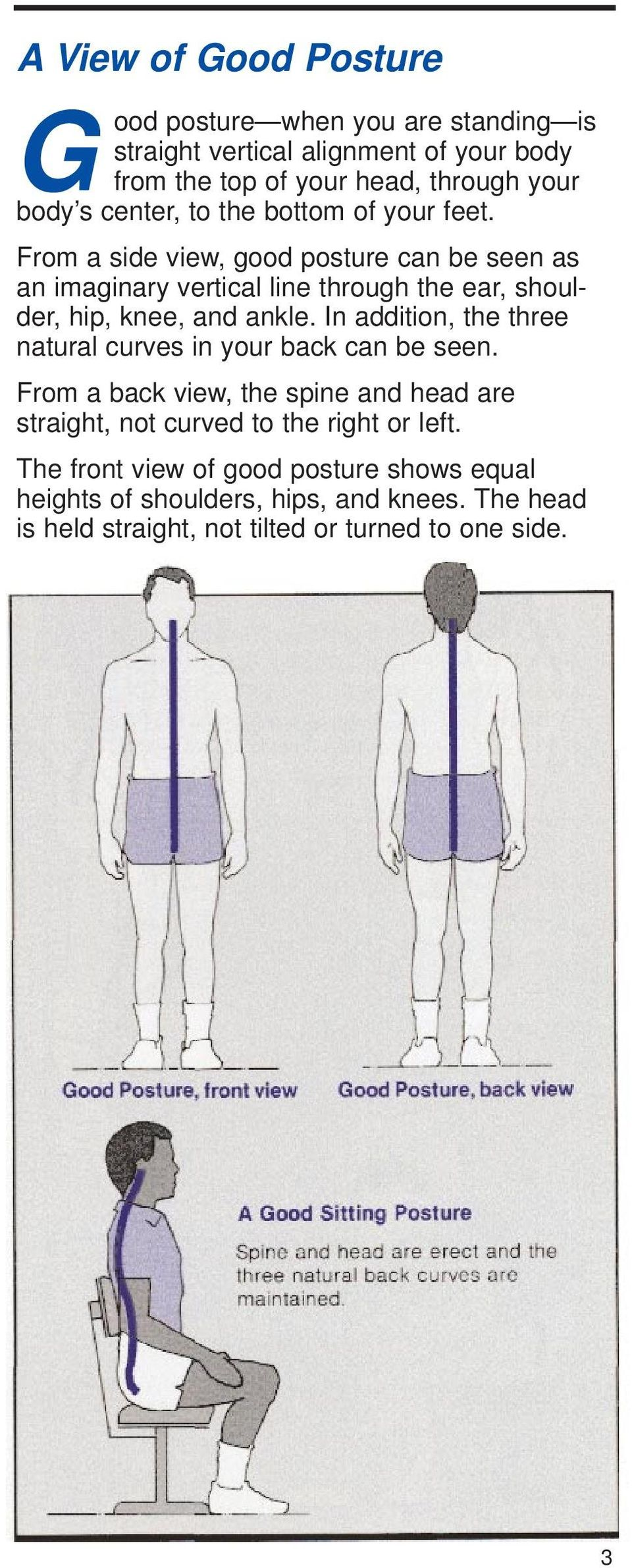 From a side view, good posture can be seen as an imaginary vertical line through the ear, shoulder, hip, knee, and ankle.