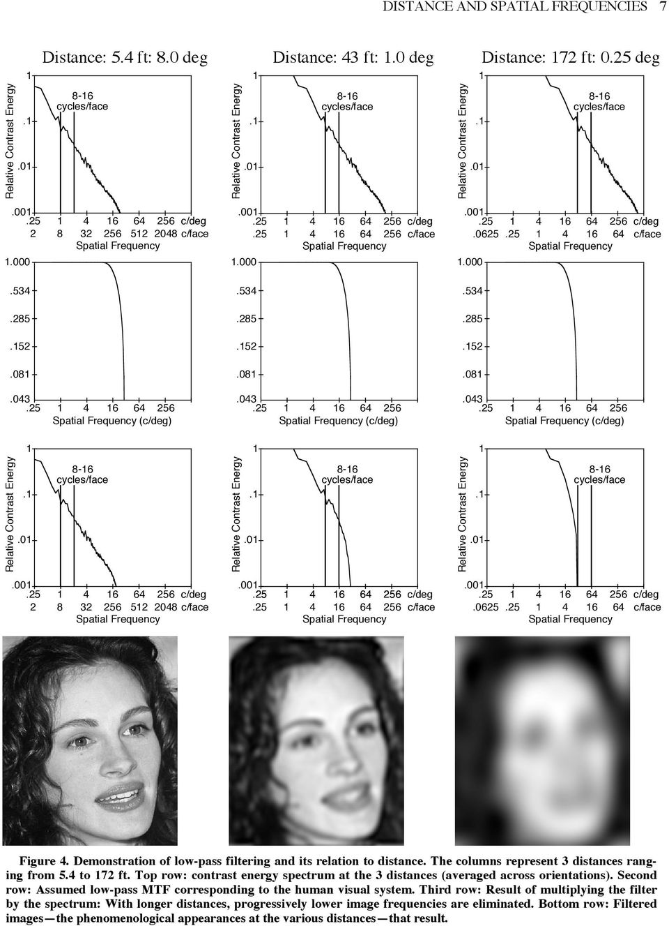 The faces appeared at one of two viewing distances, differing by a factor of 4 which, of course, means that the corresponding absolute spatial frequencies also differed by a factor of 4. Hayes at al.