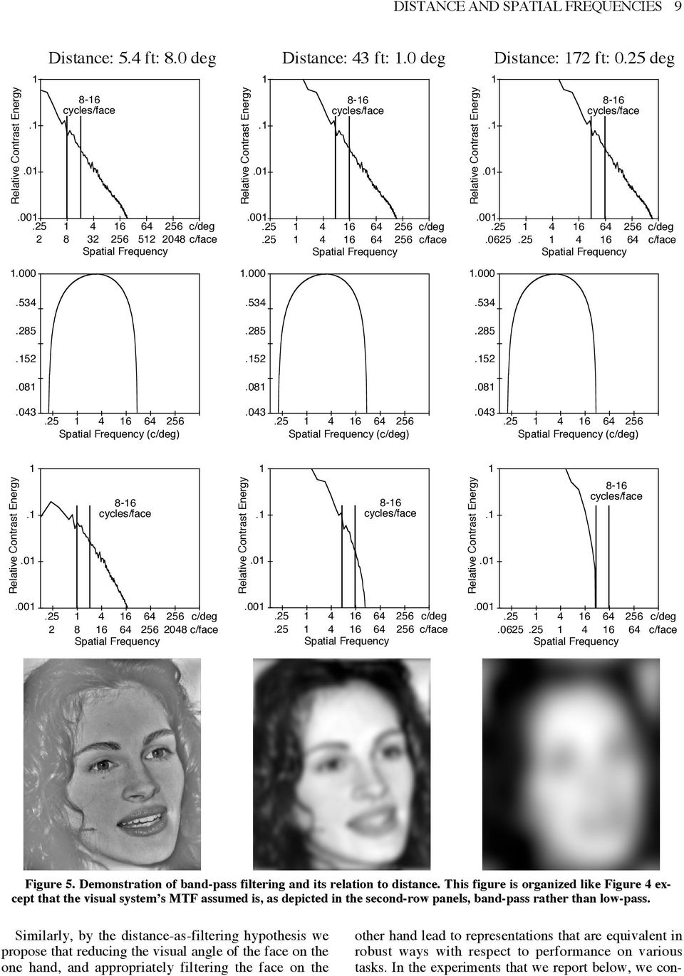 on face perception: That is, two situations a distant (i.e., small retinal image) unfiltered face and a closer (i.e., large retinal image) suitably filtered face will produce functionally equivalent representations and therefore equal performance.