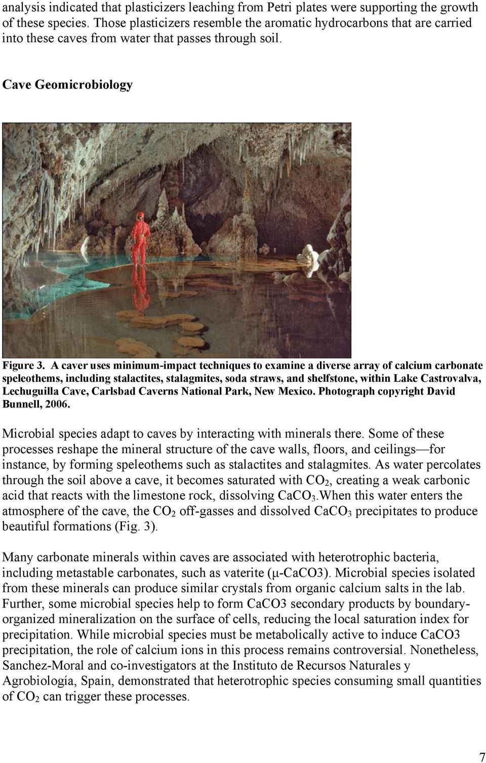 A caver uses minimum-impact techniques to examine a diverse array of calcium carbonate speleothems, including stalactites, stalagmites, soda straws, and shelfstone, within Lake Castrovalva,