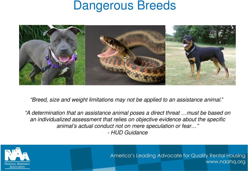 A determination that an assistance animal poses a direct threat must be based on