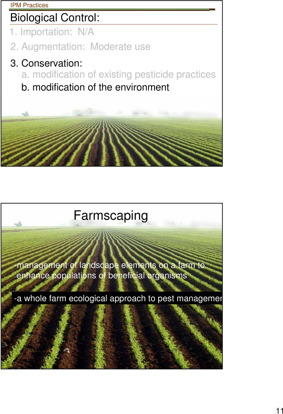 modification of the environment Farmscaping -management of landscape elements on a