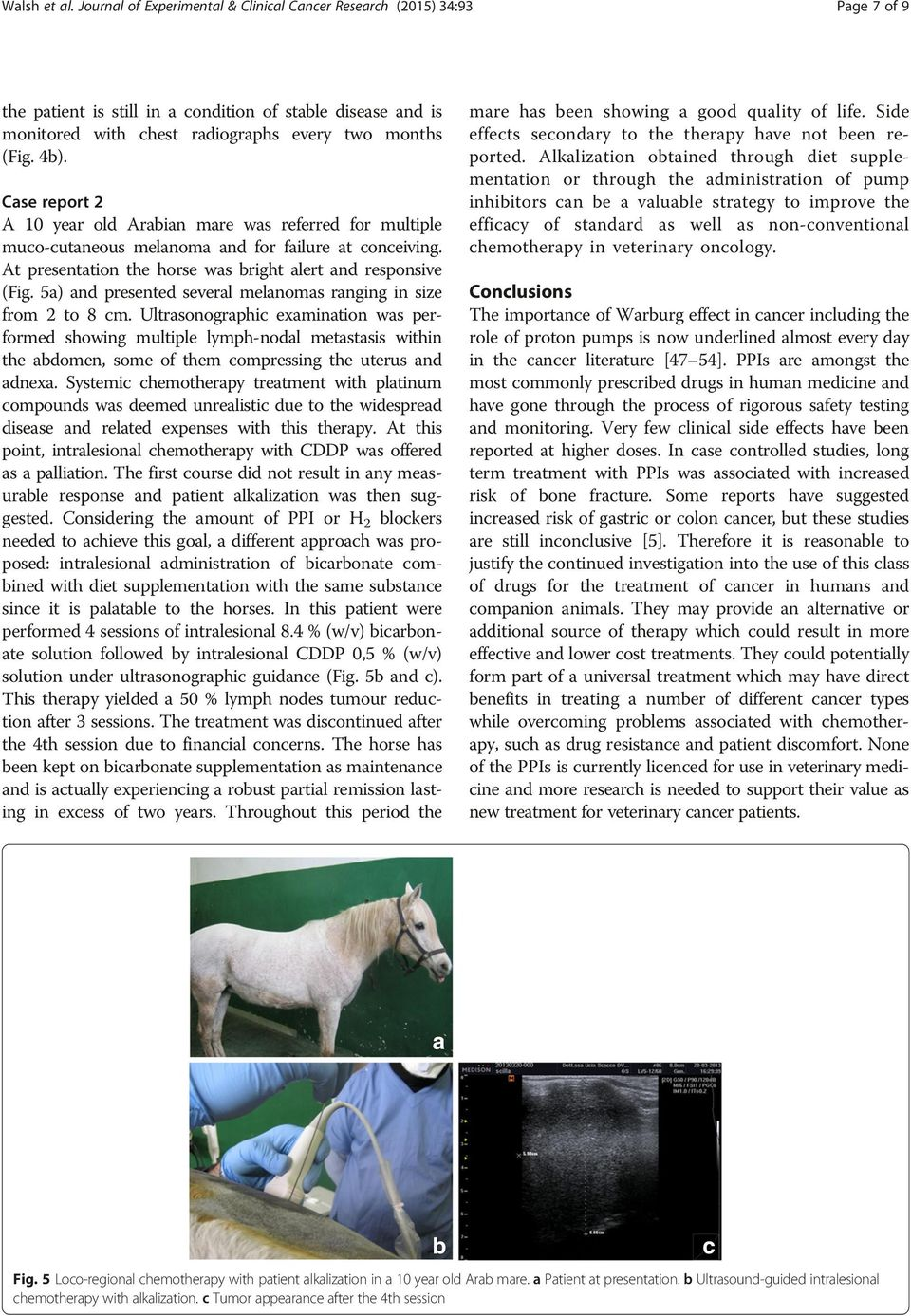 Case report 2 A 10 year old Arabian mare was referred for multiple muco-cutaneous melanoma and for failure at conceiving. At presentation the horse was bright alert and responsive (Fig.