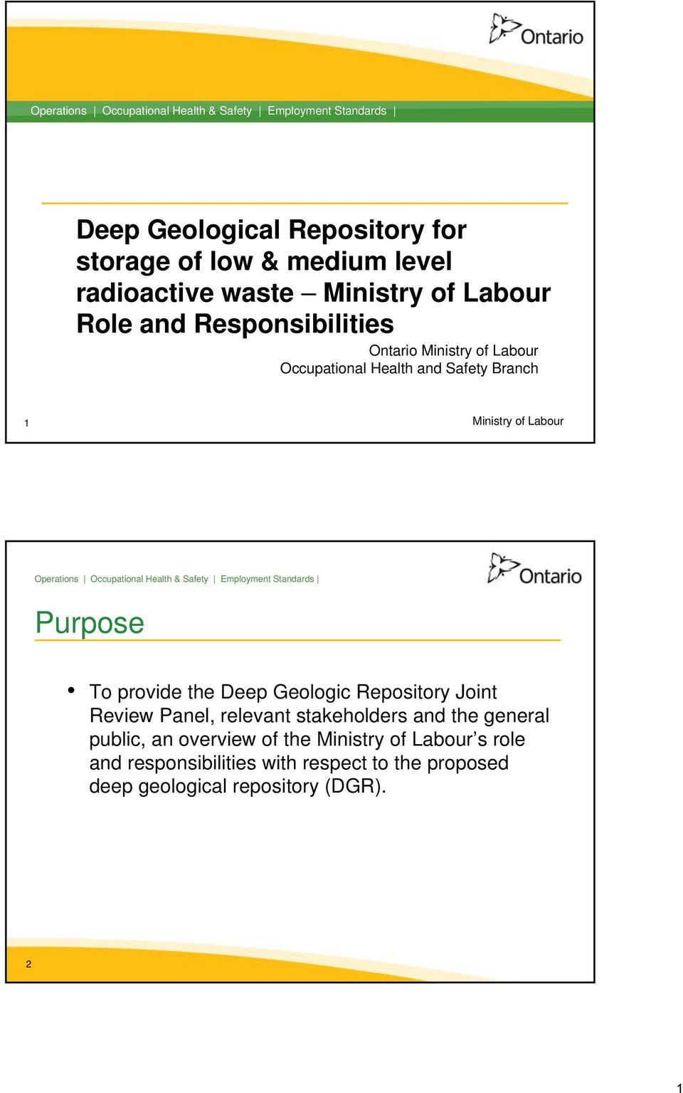 provide the Deep Geologic Repository Joint Review Panel, relevant stakeholders and the general public, an