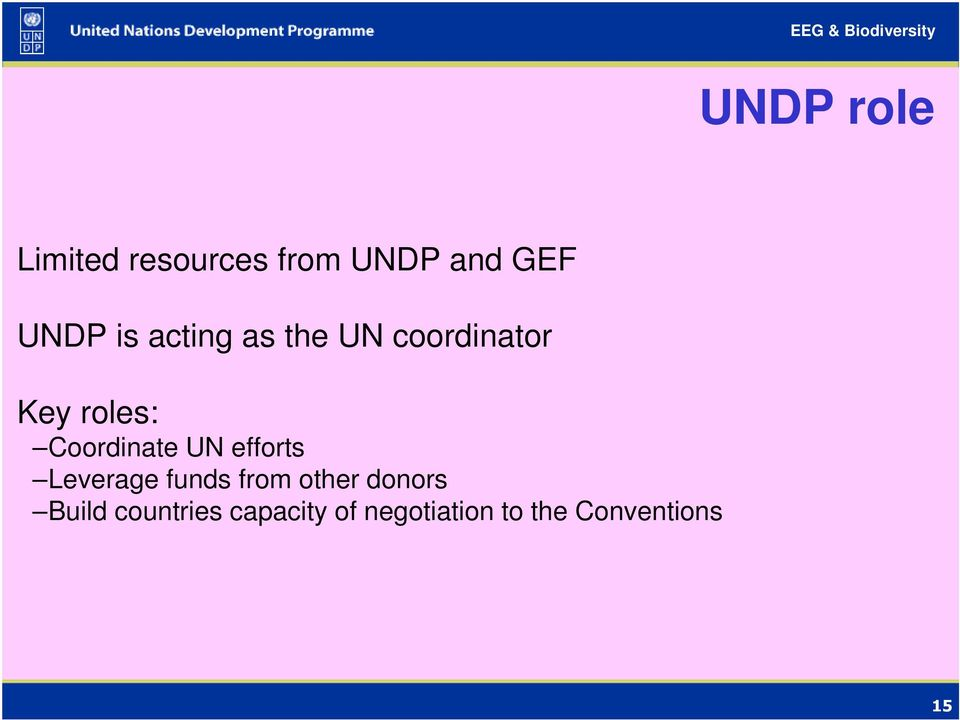 Coordinate UN efforts Leverage funds from other